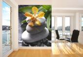 Zen Stones & Orchids - Zen and Spa Wall Murals & Posters