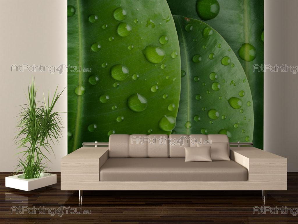 papier peint zen spa poster impression sur toile. Black Bedroom Furniture Sets. Home Design Ideas