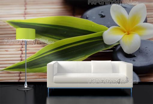 wall murals posters plumeria flower mcz1054en. Black Bedroom Furniture Sets. Home Design Ideas