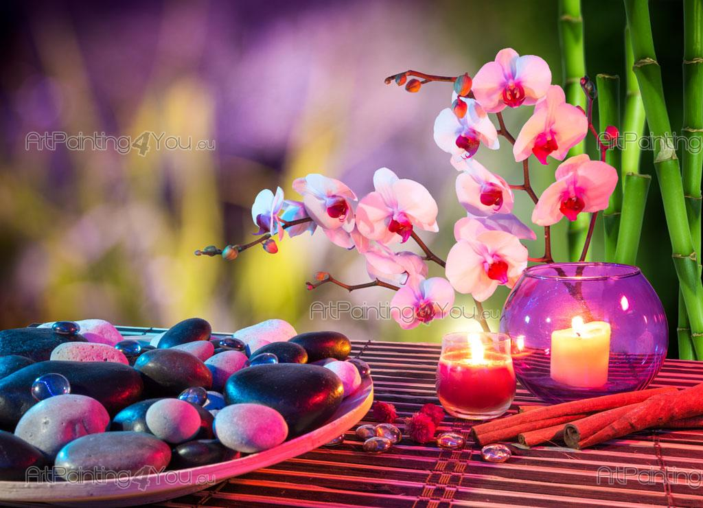orchidee zen