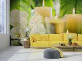 Spa & Orchids - Zen and Spa Wall Murals & Posters