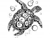 Turtle - Animals Wall Stickers