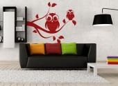 Cute Owls - Animals Wall Stickers