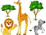 Jungle Wall Stickers for Kids - Would your kids want to go on a safari? Take them to the African savannas in the safest way possible. Decorate the kids room with a kit of wall decals...